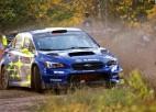 ''Subaru'' izskata iespēju atgriezties WRC rallijā
