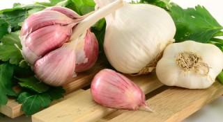 Ķiploku receptes pret dažādām kaitēm un slimībām. 1.daļa