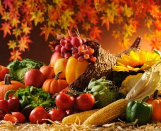 Kādus produktus vislabāk ēst, lai sagatavotu organismu gada vēsajam laikam