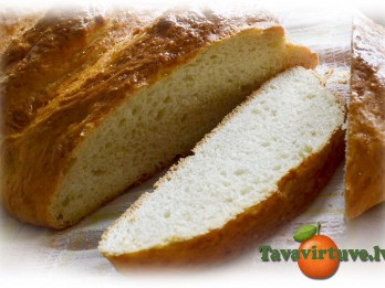 Fotorecepte: Garda, pašcepta maize