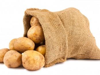 Latvijas iedzīvotāji neizprot, kas ir bioloģiska pārtika