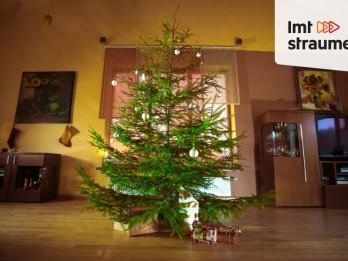 Video: Kur meklēt savu Ziemassvētku eglīti