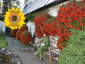 Video: Kas īpašs Svaru dārzā? 12 DĀRZU MAĢIJA