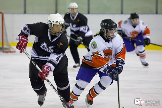Hokeja prognožu konkursa 11.nedēļas REZULTĀTI