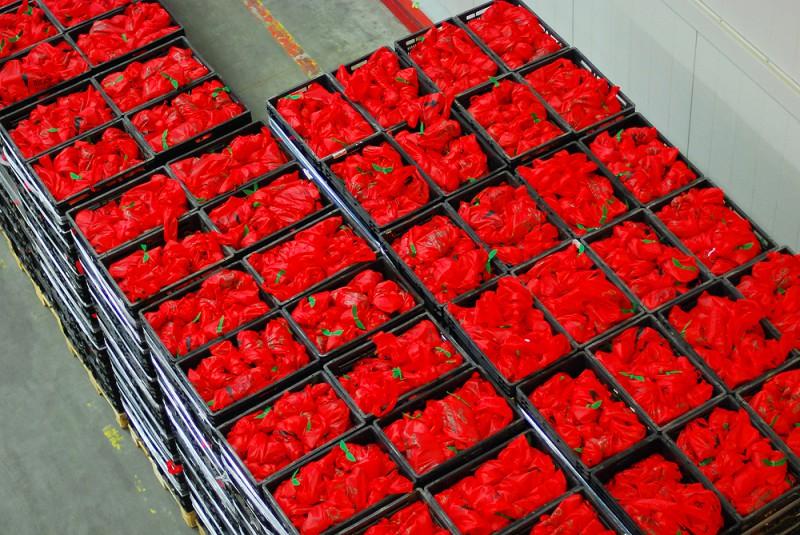 """""""Nordea"""" Rīgas maratona dalībnieki no """"Rimi"""" saņems 8.5 tonnas ar svaigajiem augļiem"""