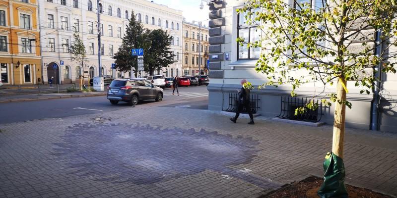 Homo Novus izskaņa un IETM tikšanās Rīgā