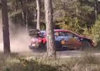 Video: Tanakam avārija un Spānijas WRC beidzies