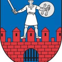 cesinieks777