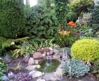 Divpadsmit dārzu maģija.  Auns un viņa dārzs.  Dārzs- mans lepnums!